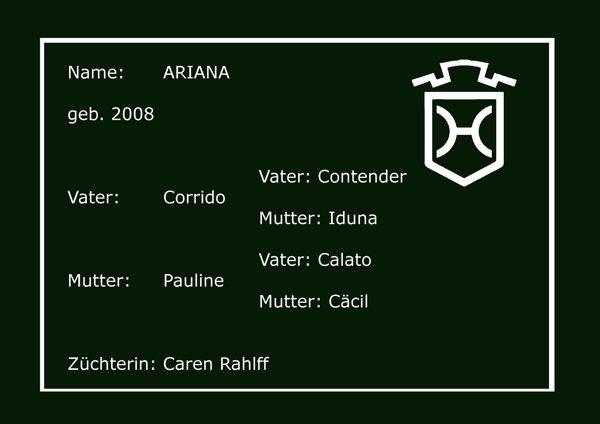 Holsteiner Pferd Ariana von Corrido (Contender, Iduna) und Pauline (Calato, Cäcil)