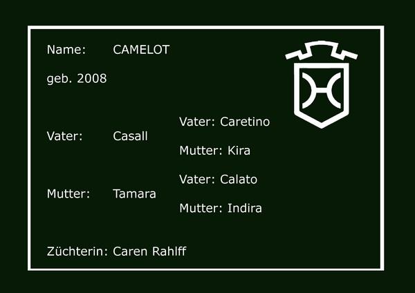 Holsteiner Pferd Camelot Tafel