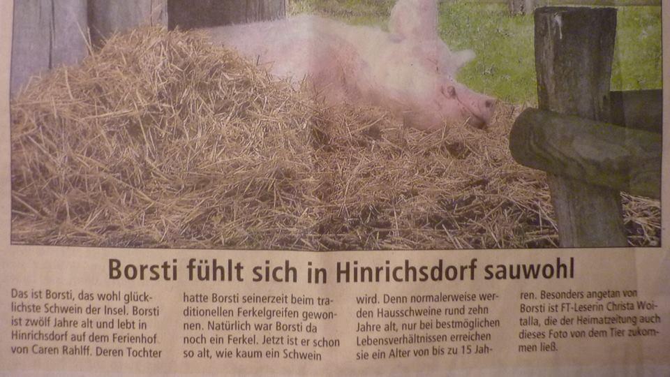Borsti – unser Schwein macht Schlagzeilen
